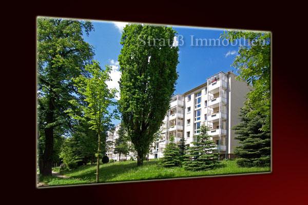 Großer Balkon mit Blick in den Stadtpark- ID 75 Image
